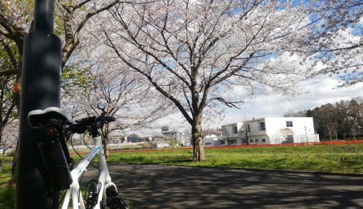 大堀川リバーサイドパークでお花見サイクリング