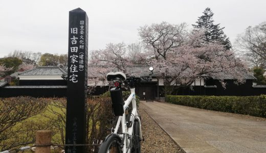 旧吉田家住宅で歴史的建造物と桜を望む